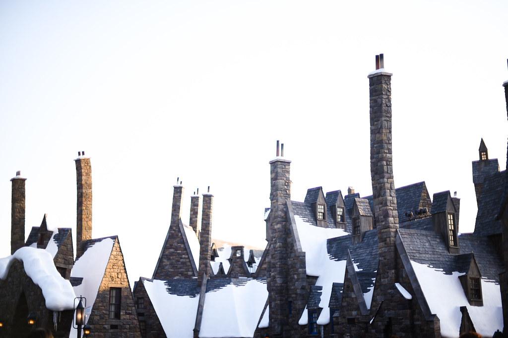 Wizarding World of Harry Potter 31