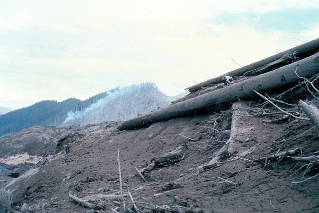 Image shows a pile of huge trees, stripped of their branches, stacked on top of a pile of tree pieces and volcanic debris. The human crawling around on top of the logs is dwarfed by their size. Beyond is a mountaintop: half of it has been stripped of trees, then there is a standing line of singed trees before the destruction ends and healthy forest covers the rest of the mountain. There is smoke rising from a small fire in the center.
