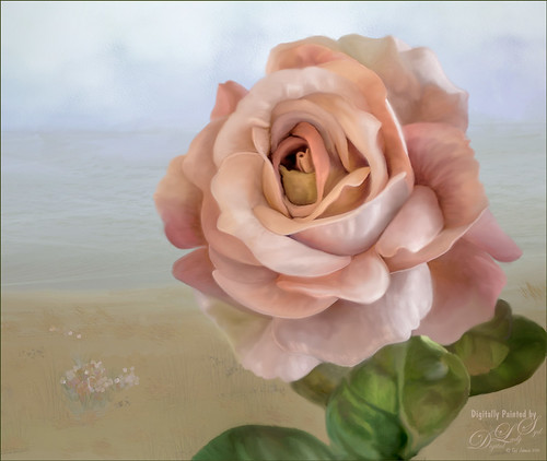 Painted image of a pink rose