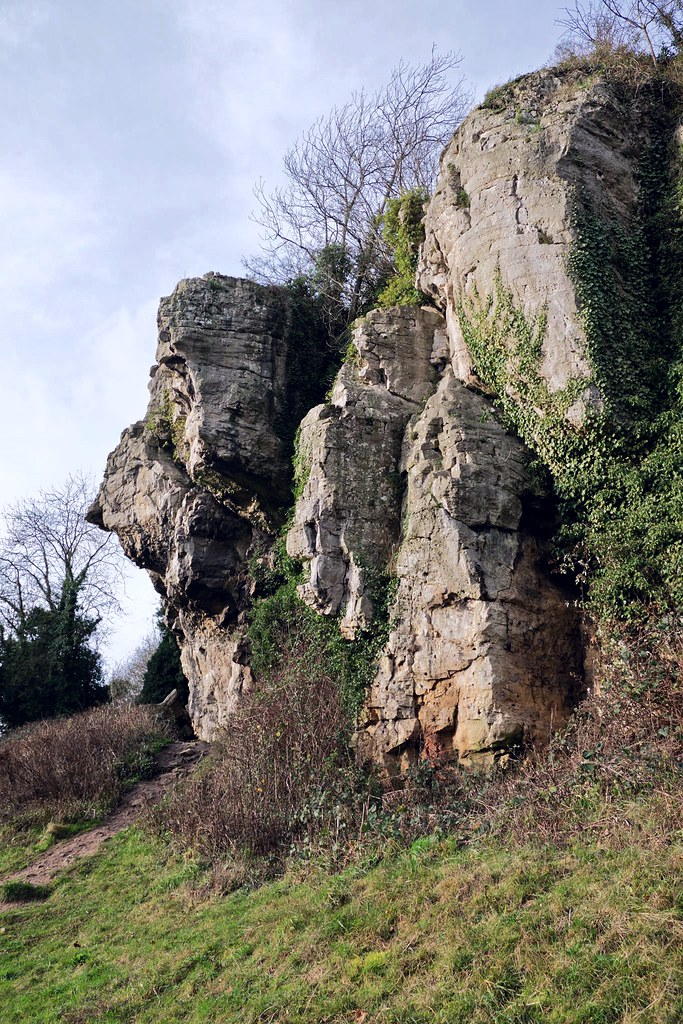 Creswell Crags. | Creswell Crags is a limestone gorge in ...