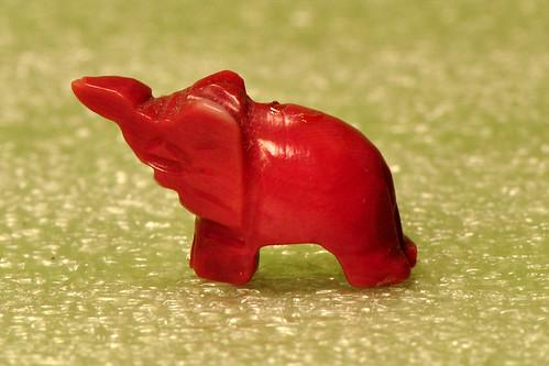 Makro Makrofotografie Fotografie Indoor-Fotographie Schlechtwetter-Indoorfotografie Januar 2016 Brigitte Stolle Mannheim Elefant Elefanten