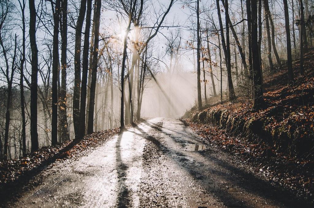 Morning Light >> Morning light over Rand Road as fog reaches over Huffman G… | Flickr