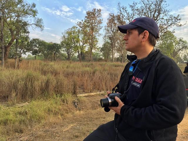 Sele de safari fotográfico en Kanha con el objetivo de ver tigres (India)