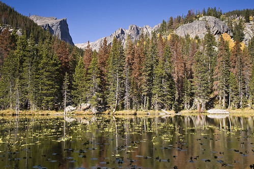 mountain lake single asian girls Nestled near lake tahoe, mountain camp is one of the best summer camps in california enroll for summer 2018 now call the office at (415) 351-camp.