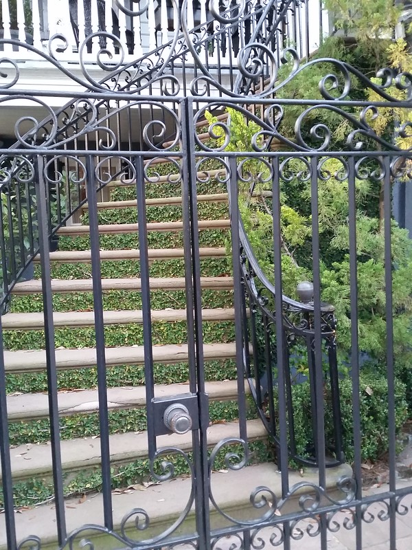 gate and steps with tiny plants