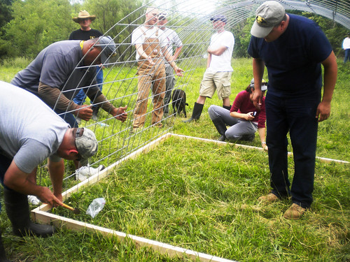Veterans participating in building a chicken hoop house