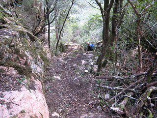 Vue du sentier au milieu de la descente