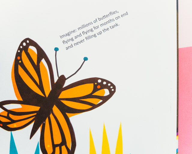 butterfly illustration in book