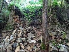 L'ancien moulin détruit et l'emplacement où était la fontaine à gauche de l'arbre