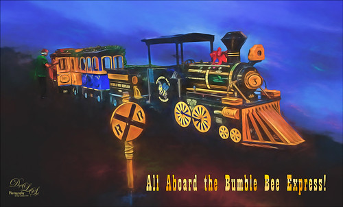 Image of the Bumble Bee Express!