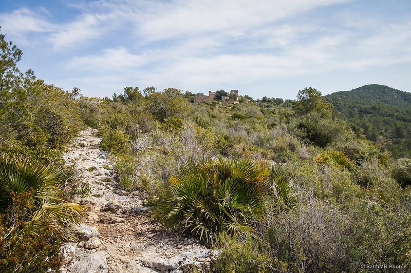 Cerca de Cal Balaguer