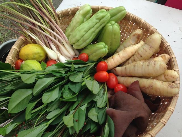 蕗蕎、山苦瓜、葛鬱金等多種野菜組合。攝影:廖靜蕙