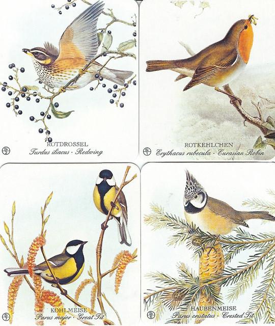 Unsere Vogelwelt_Erkennungsbilder nach alten Lithographien von John Gould_Rotdrossel Rotkehlchen Kohlmeise Haubenmeise