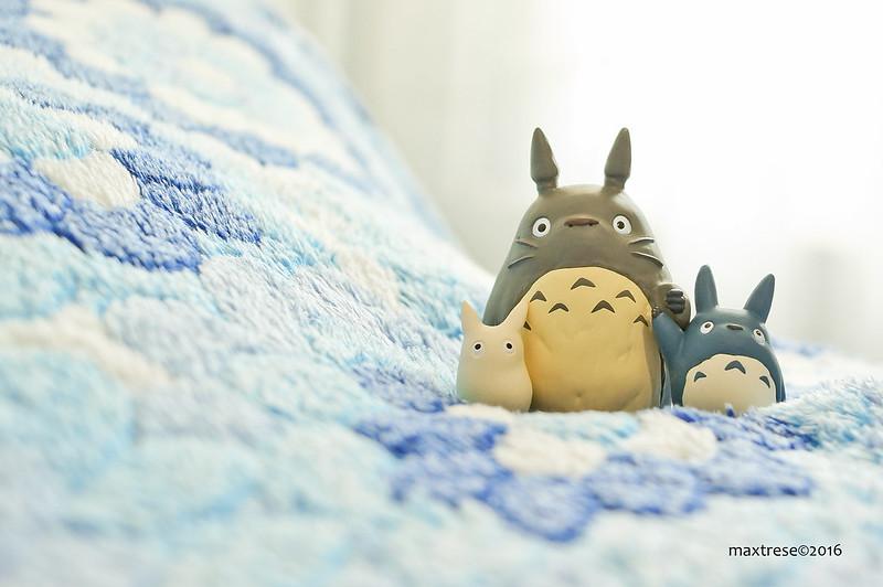 Tsumu tsumu Totoro