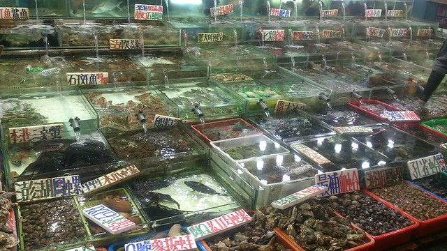 種類繁多琳瑯滿目,該如何吃得美味又安心。圖片來源:白尚儒
