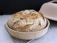Rosemary cheats sourdough