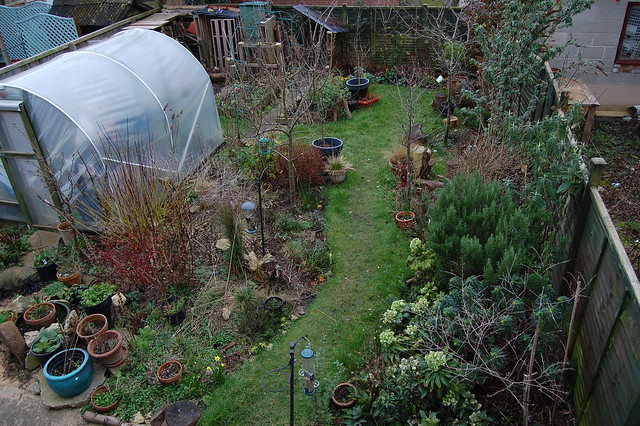 A view of the garden from an upstairs window