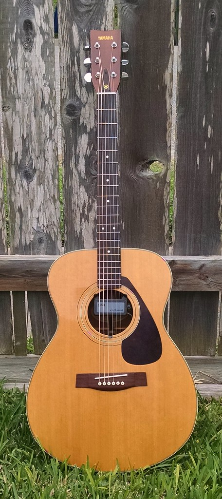 yamaha fg 331 info needed the acoustic guitar forum. Black Bedroom Furniture Sets. Home Design Ideas