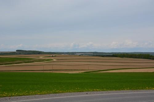 The Black Brook Watershed's landscape