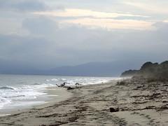 La plage à hauteur du Pozzu Sale : vers le Sud
