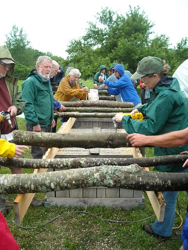 Workshop participants inoculating logs for forest grown shiitake mushroom production