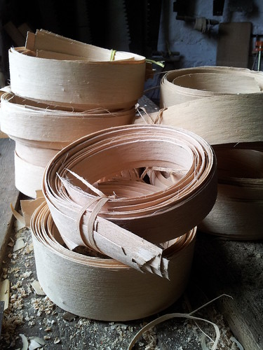 coils of ash splint for basketry
