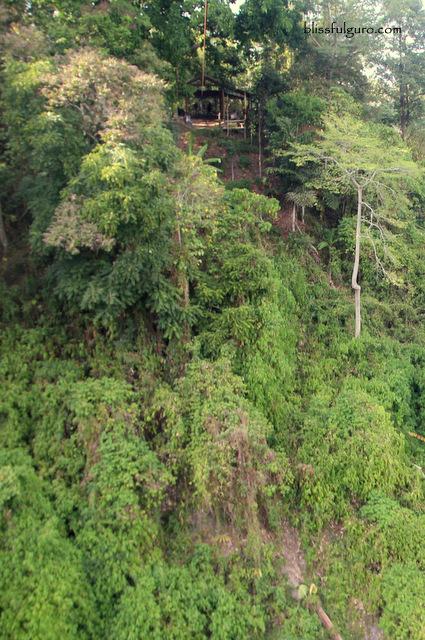 Seven Waterfalls Zipline Lake Sebu
