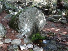 La fontaine derrière le caseddu