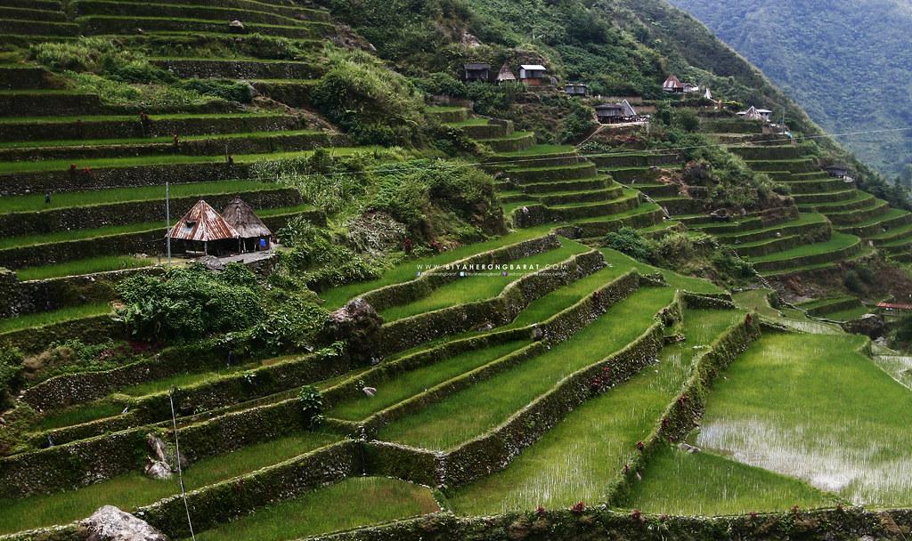 Pat-yay Village Mount Amuyao Traverse Barli Batad