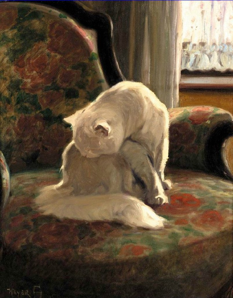 Cat Washing Its Coat by Arthur Heyer, c.1915