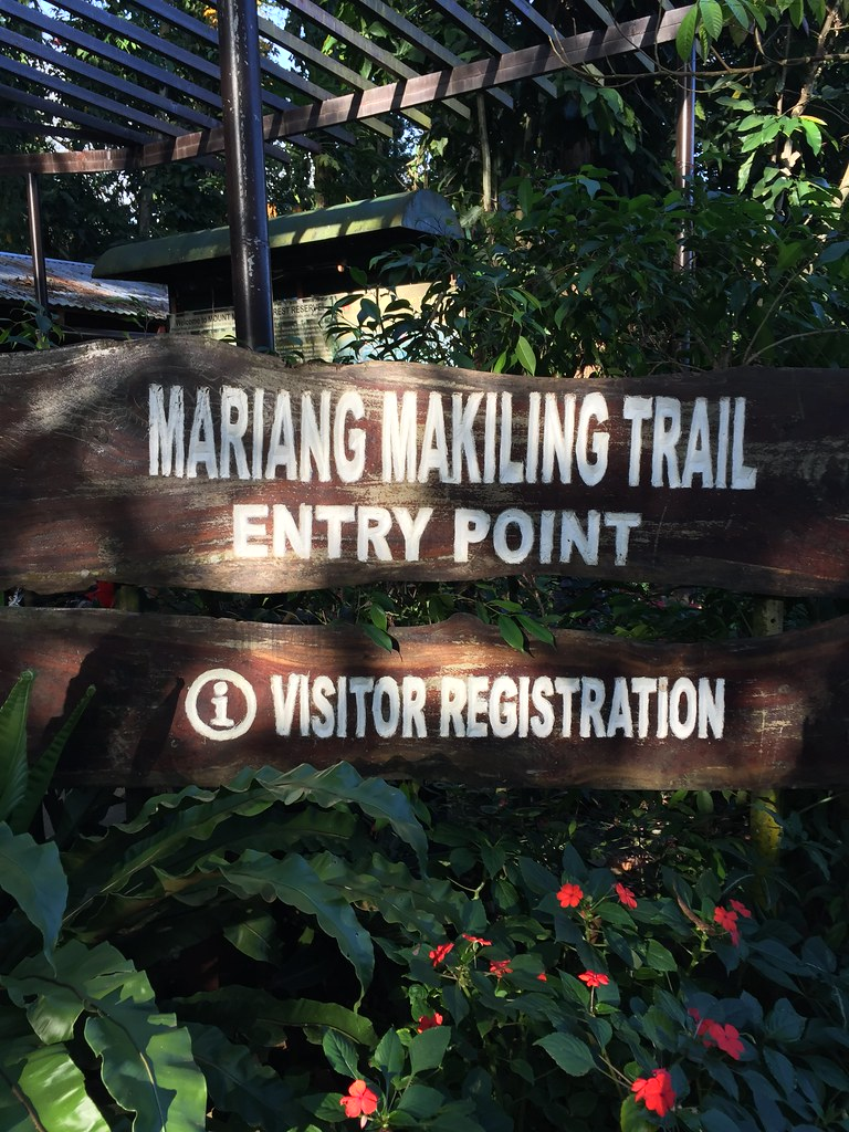 Mount Makiling (Los Banos, Laguna) - Pinoy Trails | The