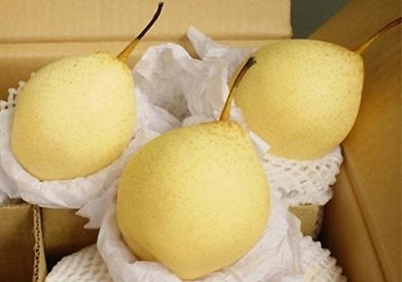 Những loại quả ăn vào sẽ giã rượu ngay tức khắc