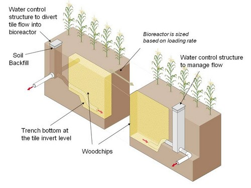 Illustration of how a denitrifying bioreactor fits in with drainage water management (DWM). Image by John Peterson.