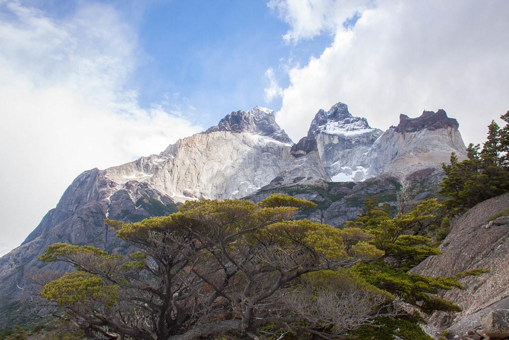 Paysage de Torres del Paine