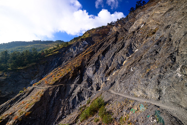 連有人在使用的能高越嶺道遇到崩坍地都是這般難以維護,何況沒有人行走與維護的一般林道?大自然的力量超乎想像,全台超過3,000公里長的林道,絕大多數現在都被崩坍地和茅草荊棘所佔據。圖片來源:蔡日興。