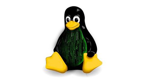 kernel-linux-4