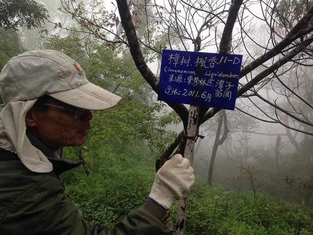 興大森林系退休教授羅紹麟。攝影:廖靜蕙