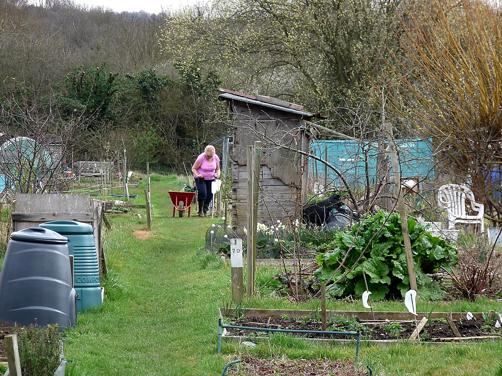 Allotment 96/366
