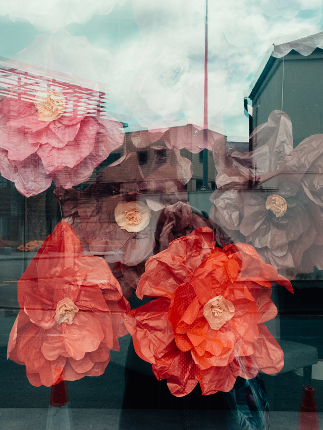 reflection of paper flowers in shop window