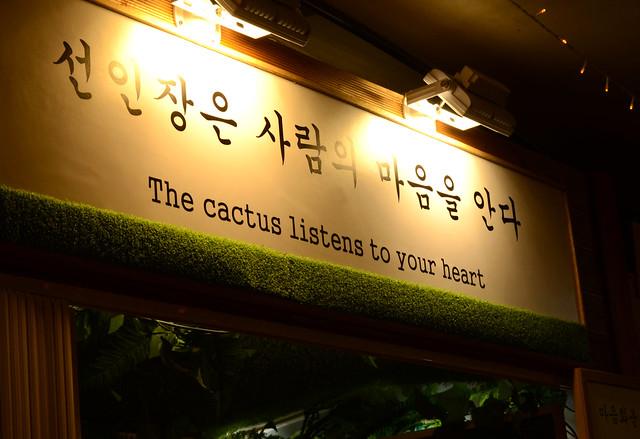 Cactus Banner