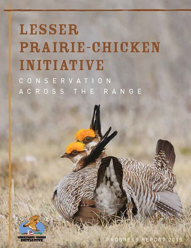 Lesser Prairie-Chicken Initiative: Conservation across the Range cover