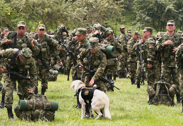 Ejército colombiano detuvo a guerrillero del ELN de nacionalidad venezolana