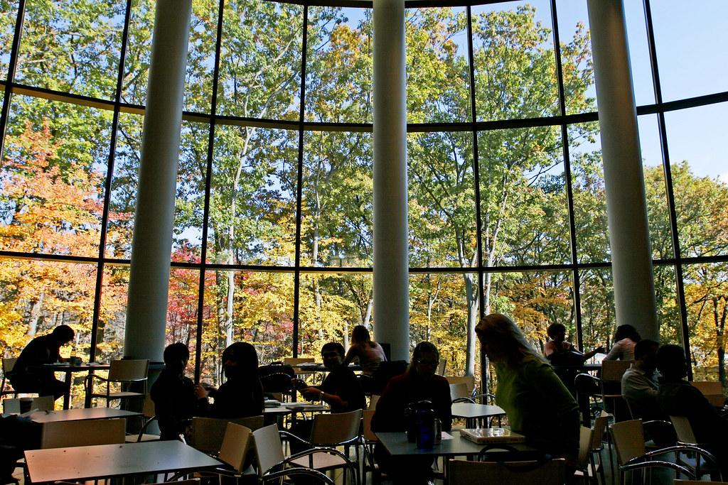 information for current brandeis undergraduate students