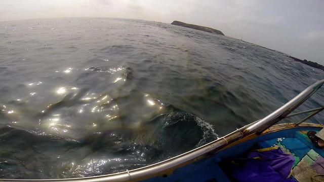 船體漏出的油料形成油帶,撲鼻惡臭。圖片來源:海洋公民基金會。