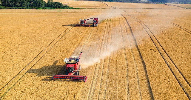 combine-harvester-wheat-agriculture