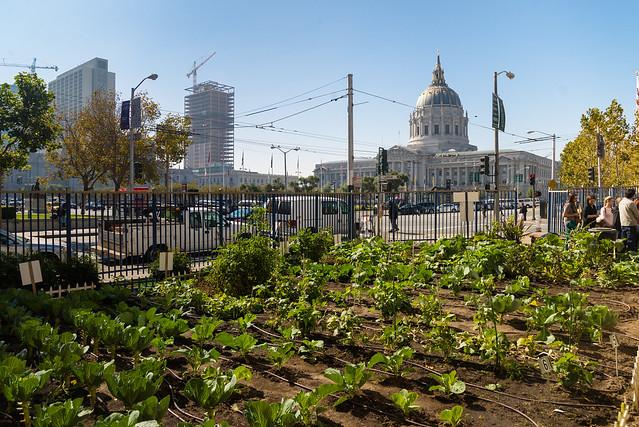 大量移民進入城市,結合農業景觀的城市成為未來的都市風景。cc bySPUR@Flickr