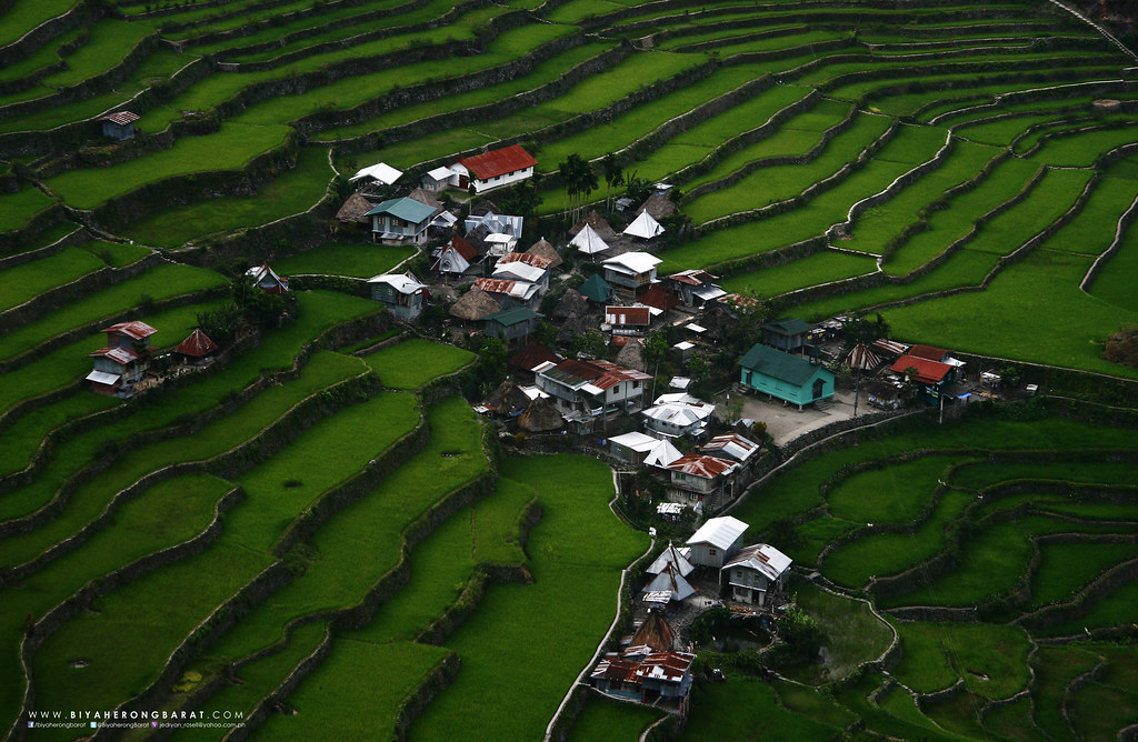 Batad Rice Terraces Mount Amuyao Traverse Ifugao Mountain Province Barlig Batad
