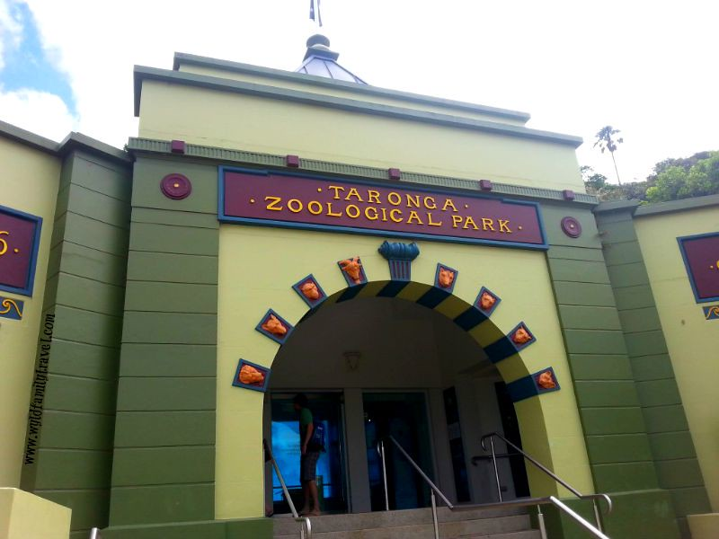 The Zoo trail
