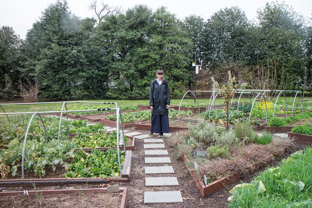 Vegetable garden ideas - Visiting The White House 18 The White House Garden Flickr
