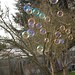 bubbles-winter-fun-3